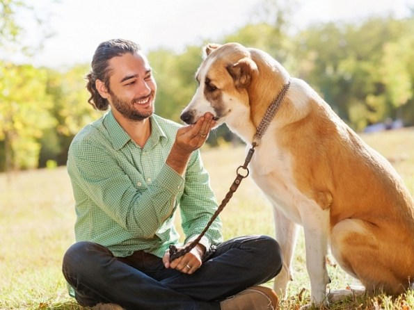 bigstock_man_and_dog_52950244