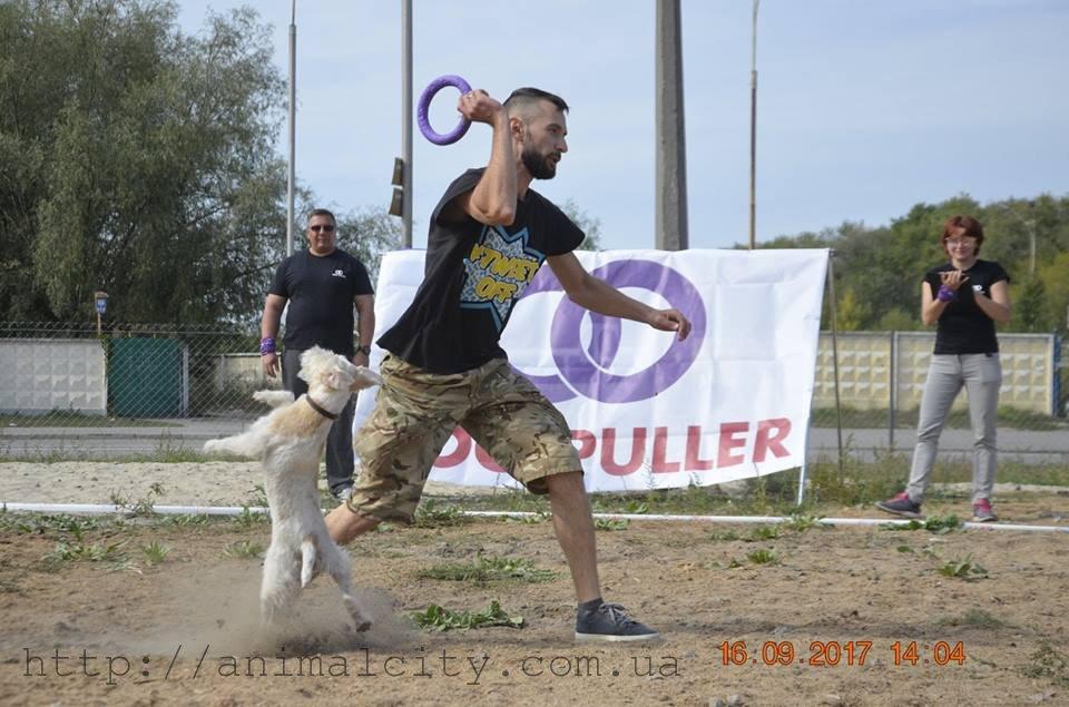 Перший семінар та змагання з ДогПуллер на майданчику Sport DOG Area