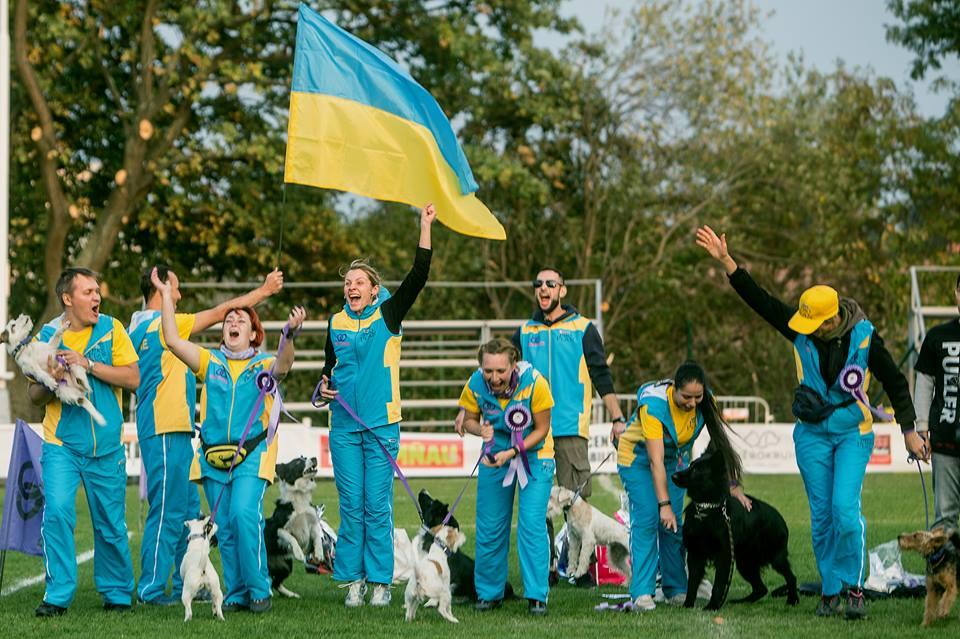 Український кінологічний прорив в рік Cобаки