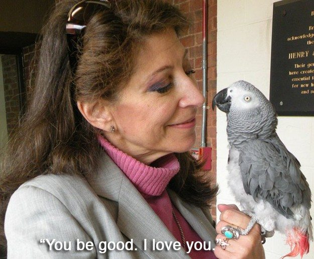 1-animal-stories-guaranteed-to-melt-your-heart
