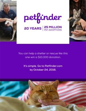 Petfinder20th_Poster_8