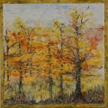 "<h5>Autumn Light Show II</h5><p>Watercolor on yupo (Mounted on cradled board)  12""x12""</p>"
