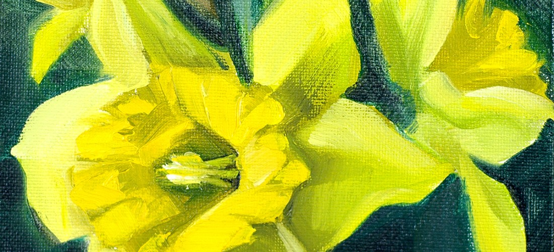 bouquet-of-daffodils