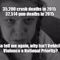 So why is protection from vehicle violence not listed on the Democratic Party Platform?