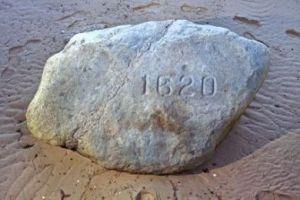 27.9 KB Plymouth Rock