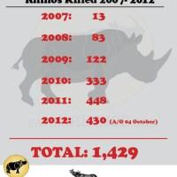 South Africa: 430 Rhinos Killed in 277 Days