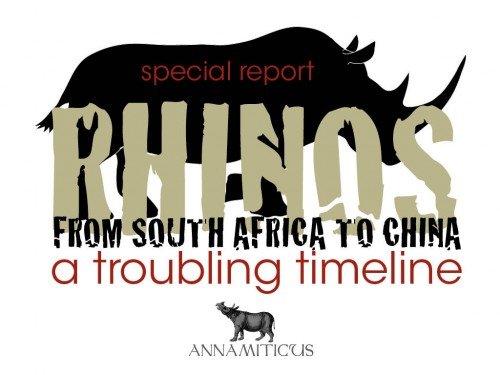 "There is a strange new development in the story of China's ""rhino horn farming"" scheme. Image © Annamiticus"