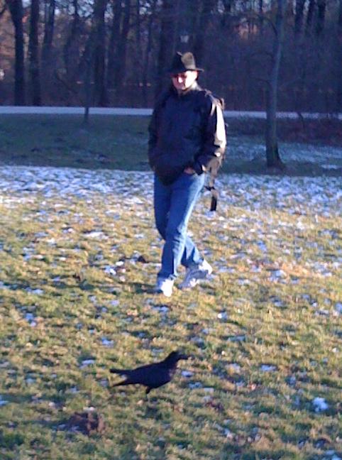helmut-crow