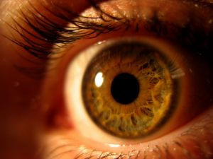 Getting a needle in his eye, is a difficult procedure for Alzheimer's patients.