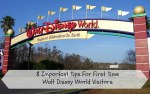 8 Important Tips for First Time Walt Disney World Visitors