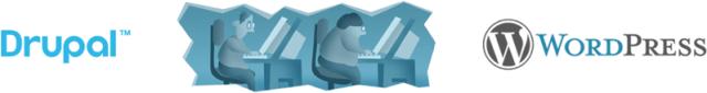Drupal to WordPress migration service