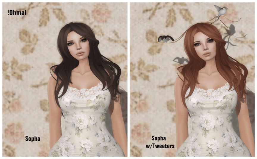 !Ohmai Sopha 2014 Hair Fair