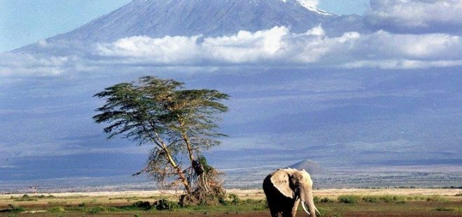 highest Mountain in Africa