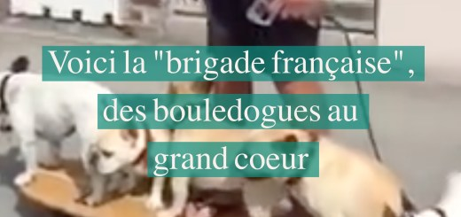 brigade-francaise