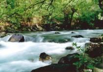 """""""Το ποτάμι"""" – Αντώνης Σαμαράκης"""
