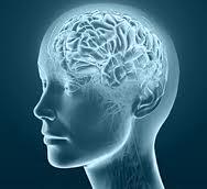 Αντίληψη – Η στροφή των νευροεπιστημών στη γνωστική λειτουργία