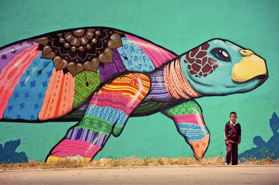 street-art-2013-turtle-tijuana