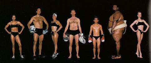 Σύγκριση του σωματότυπου κορυφαίων αθλητών διαφόρων αθλημάτων