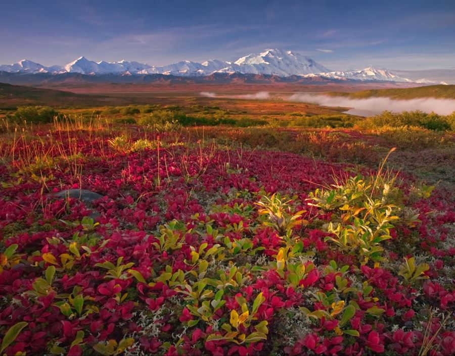 Denali National Park, Alaska, ΗΠΑ