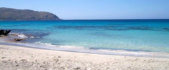 Κεδροδάσος, Κρήτη