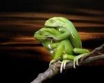 Xρίστος Παπαδημητρίου: «O Δαρβίνος δεν καταλάβαινε το σεξ επειδή απειλούσε τη θεωρία του»