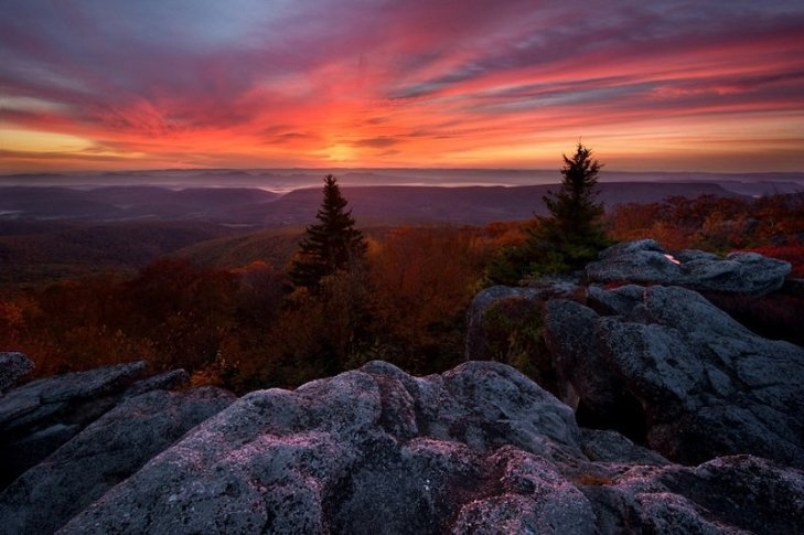 colorful-fall-photos-autumn-sunrise-bear-rocks