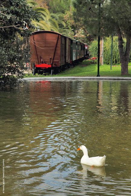Μουσείο Σιδηροδρόμων, Καλαμάτα: Είναι το πρώτο θεματικό πάρκο που δημιουργήθηκε στην Ελλάδα (1986) σε ένα κομμάτι του Δημοτικού πάρκου του ΟΣΕ στην Καλαμάτα. Σε μια δροσερή όαση 54 στρεμμάτων μέσα στην πόλη, θα δείτε ό,τι σχετίζεται με την ιστορία του τρένου, από κλειδιά αλλαγής για τις ράγες ως ατμάμαξες και επιβατηγά οχήματα του προηγούμενου αιώνα.  * Λιμάνι, ανοικτά Δευτέρα ? Παρασκευή 08:30-15:00, τηλ.: 24210 23644