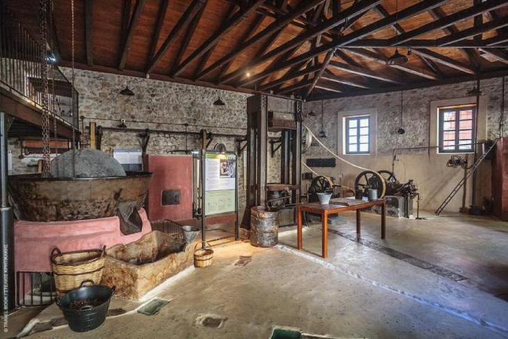 Μουσείο Ελιάς Paragaea, Πάργα: Το πρώτο μηχανοκίνητο λιοτρίβι της Πάργας «επαναλειτουργεί» και διηγείται το ταξίδι της παραθαλάσσιας πόλης από τα πρώτα της εμπορικά βήματα μέχρι τον τουρισμό. Ανοιχτό κάλεσμα για λάτρεις της ελιάς, της φύσης και της γευσιγνωσίας.  * Τζαβέλλα 19, Πάργα, 26840 32889, FB: Paragaea - Old Olive Oil Factory