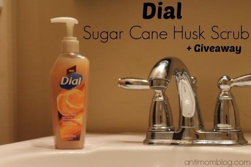 Dial Sugar Cane Husk Scrub Hand Soap + Giveaway