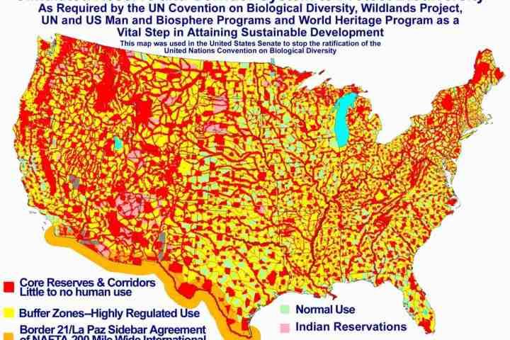 Biodiversity-Map