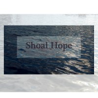The Narrator's Place, an essay on writing Shoal Hope