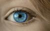 アディダスのジャージは何色に見える?青と白もいれば緑と茶も!
