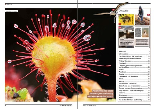 Sundew and the contents of the State of Nature report.