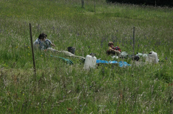 Fieldwork on dry meadow in the Bílé Karpaty Mountains.