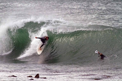Muizenburg_surfing