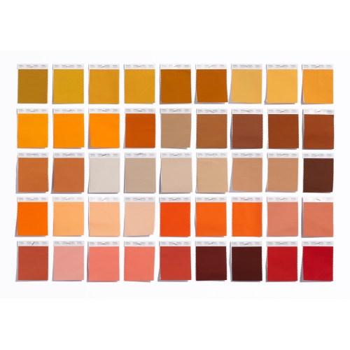 Medium Crop Of Steampunk Color Palette