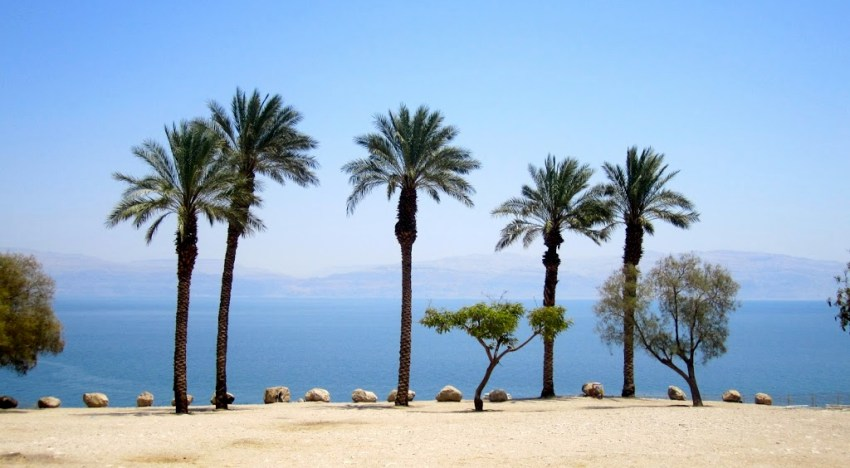Floating at the Lowest Point on Earth: The Dead Sea