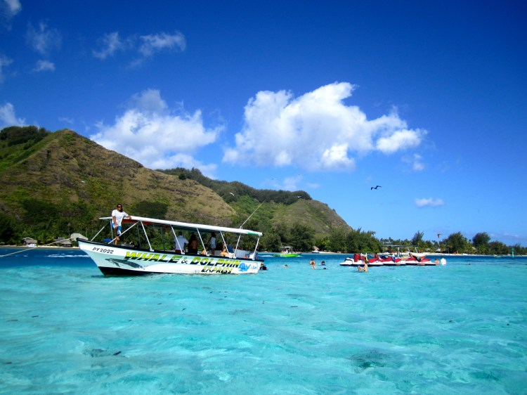 snorkeling cruise bora bora