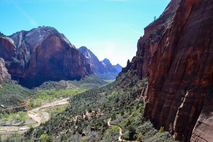 zion national park-39