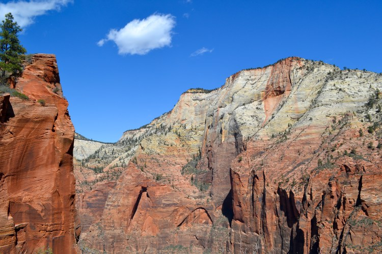 zion national park-63