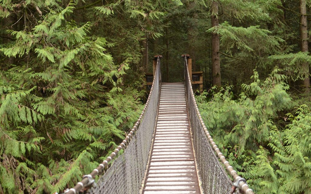 Things to do in Vancouver, Canada: 15 Things Not to Miss