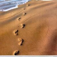 Voetstappen in het zand