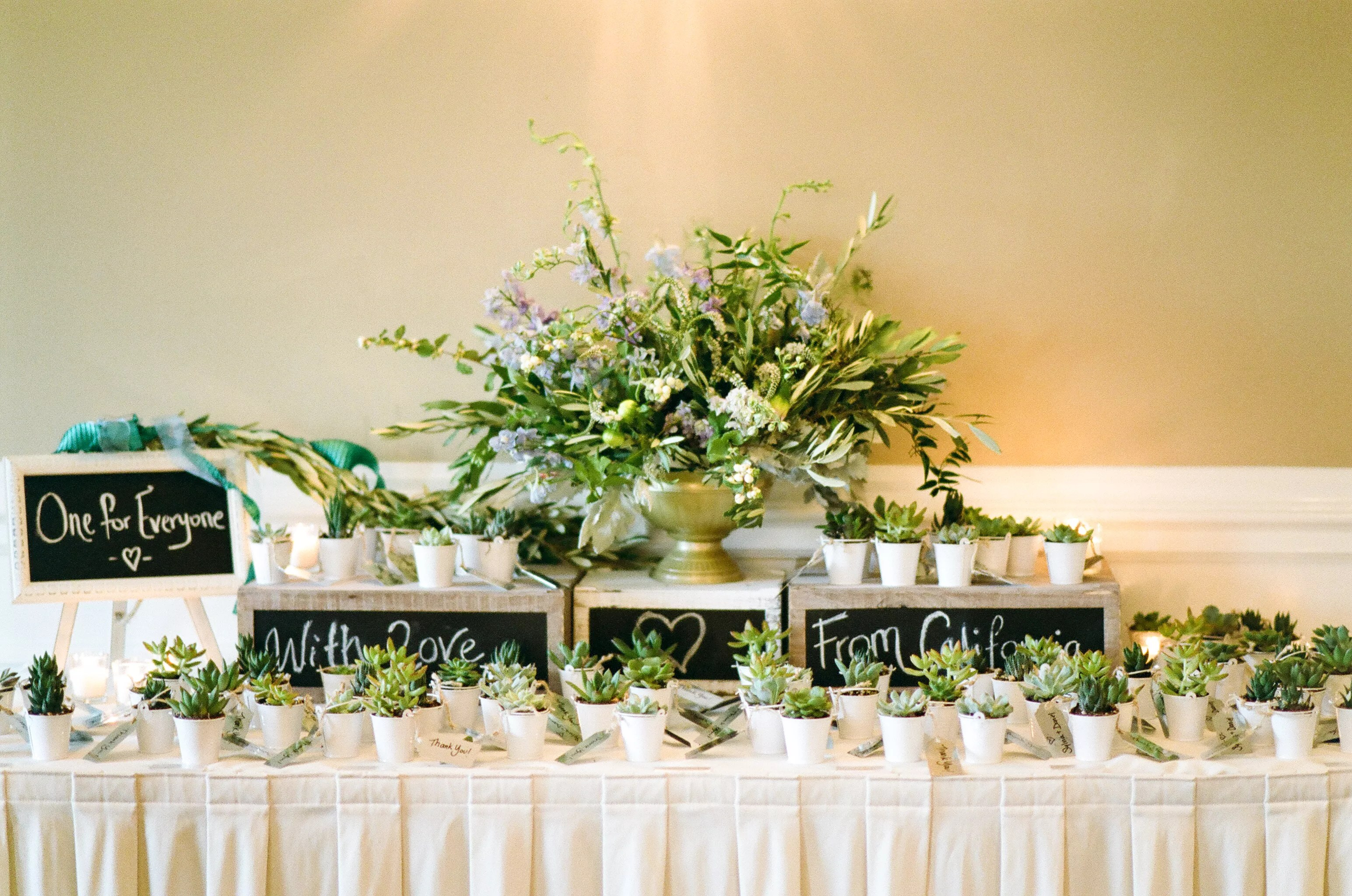 display table with succulent wedding favors photo succulent wedding favors
