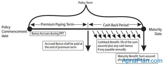 Bajaj Allianz Cash Rich Insurance Plan working