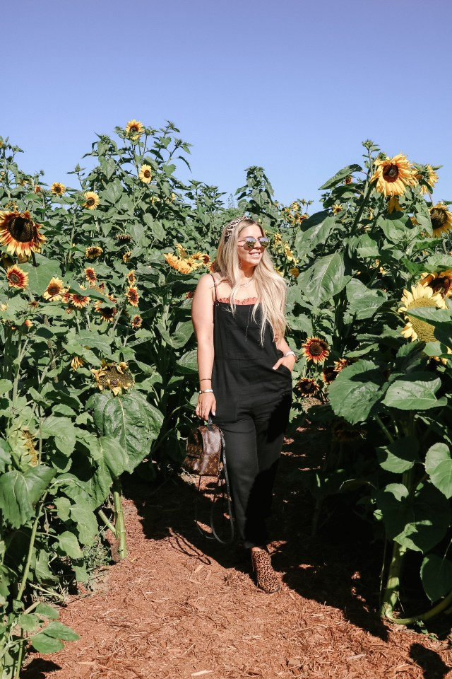Standing in the sunflower patch at Taves Family Farm in Abbotsford, BC