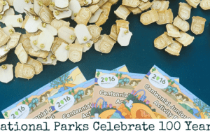 National Parks Celebrates 100 Years in 2016