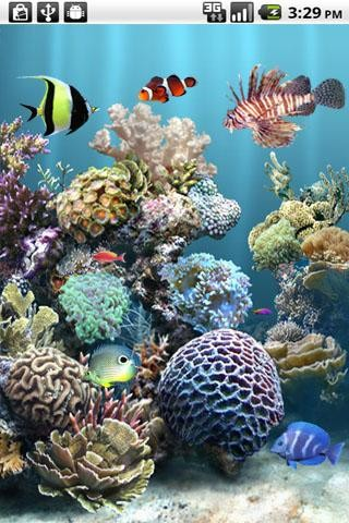 aniPet Aquarium Live Wallpaper Free Android Live Wallpaper download - Appraw