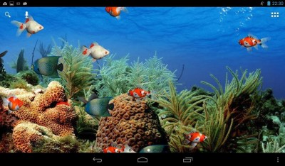 Aquarium Live Wallpaper Free Android Live Wallpaper download - Appraw