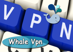 Whale VPN for PC Windows and MAC Free Download