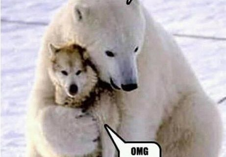 hug-him